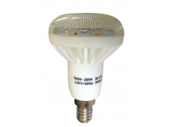 2894 R050 LED Spot 110V