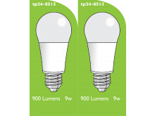 8513 LED 9W Frosted GLS ES/E27 Cap *2 Pack Bundle*